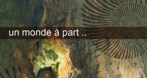 la grotte du geek